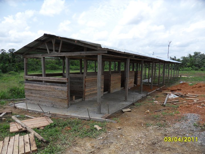 Pig Pen Plans http://equatorialguineaonline.com/category/countryprojects/project2